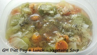 GM diet day 6 - Vegetarian lunch